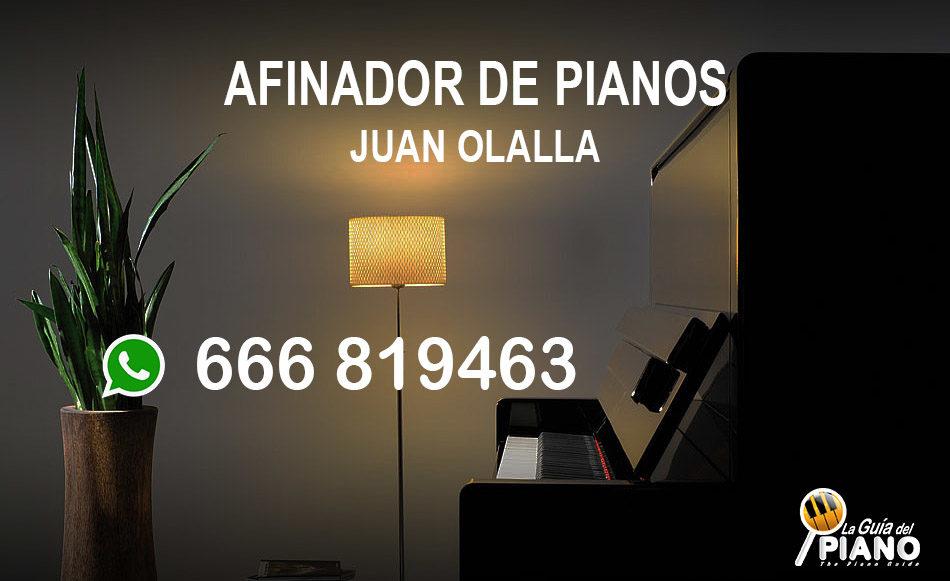 Afinador Pianos Málaga